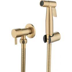 Grifo empotrado de bidé dorado cepillado higiénico oro - Agua fría